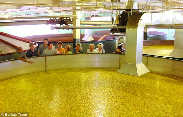 No swimming! Huge vats of corn are cooked up to start the brewing process