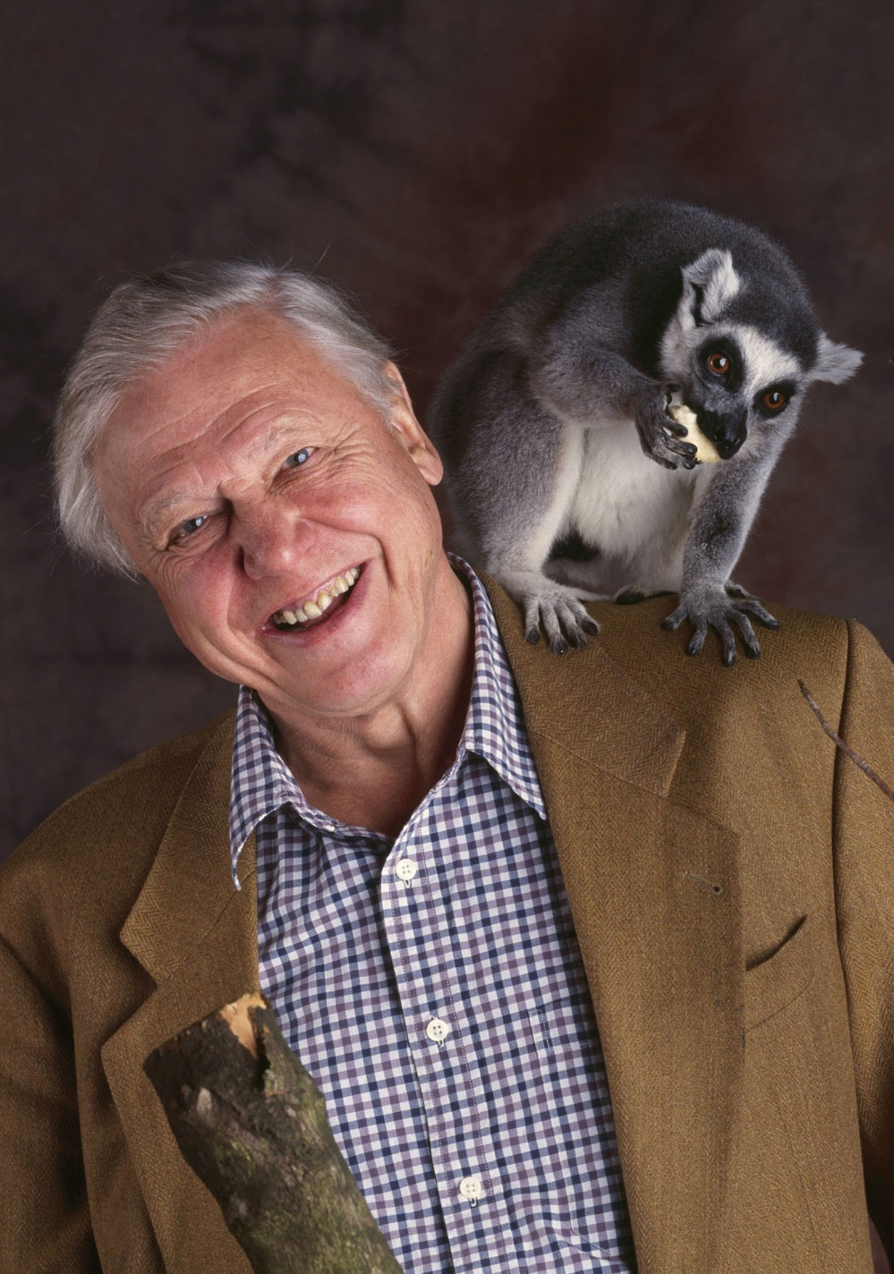 Sir David Attenborough and ring-tailed lemur from The Life of Mammals 2002.